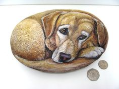 Realistic Pet Portrait on a Stone 8-9 in. Painted Rocks by