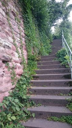 treppe heidelberg