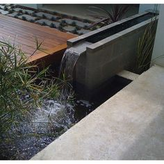 Indoor Water Garden Design, Pictures, Remodel, Decor and Ideas - page 3