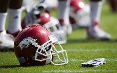 Ten Reasons Razorbacks are the Best