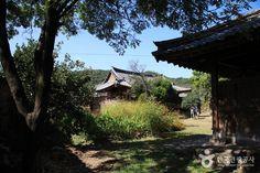 namsa village - Google Search