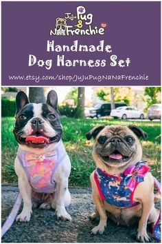 Dog Harness For Medium Dogs Dog Harnesses With Velcro For Small Dogs Small Puppies, Dogs And Puppies, Small Dogs, Dog Harness, Dog Leash, White French Bulldog Puppies, French Bulldogs, Pug Love, Dog Accessories