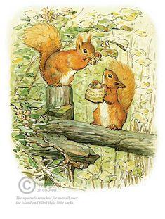 'Squirrel Nutkin' by Beatrix Potter