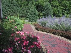 I like the knock out roses and russian sage with the brick.
