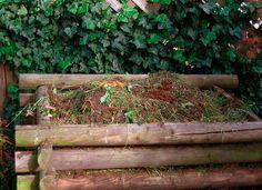 Vom Samen bis zur Ernte: Kompost liefert den besten Dünger. Pflanzen beziehen die meisten ihrer Nährstoffe aus dem Boden. Wenn sie sterben, verrotten sie und ihre...