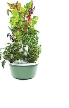 Tower Garden by Juice+, An aeroponic grower. Has anybody ever used one of these things. I'd like some feedback.