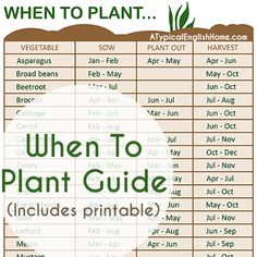 A Typical English Home is sharing a free printable for her When To Plant Guide
