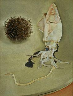 Lucian Freud, Still Life with Squid and Sea Urchin, 1949, Courtesy Harris Museum & Art Gallery, Preston.  Aquatopia   Nottingham Contemporary