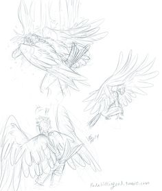 Some Tips, Tricks, And Methods For Your Perfect drawing tip and tricks Wings Sketch, Wings Drawing, Drawing Base, Drawing Tips, Art Sketches, Art Drawings, Sketches Tutorial, Christmas Drawing, Figure Drawing Reference