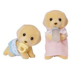 Golden Retriever - Zwillinge