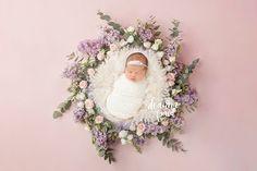 Roseville Newborn Photographer   Deanna Paul Photography   home