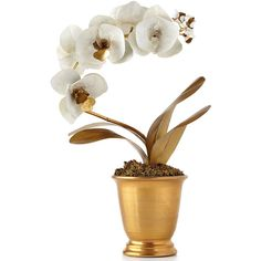 Tommy Mitchell Gilded Potted Orchid (¥155,715) ❤ liked on Polyvore featuring home, home decor, flowers, plants, orchid flower pots, handmade home decor, orchid pot и floral home decor