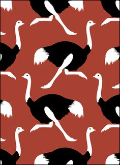 Vintage Ostriches stencils, stensils and stencles
