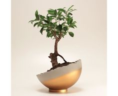 Handmade Home Decor 12821 Gold colored handmade concrete sphere can be used in different angles on its metal ring base. Sphere Gold can be used as a decorative object or it can Cement Art, Concrete Crafts, Concrete Projects, Beton Design, Concrete Design, Design Design, Graphic Design, Diy Concrete Planters, Diy Planters