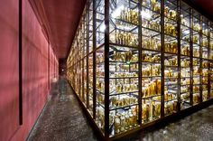 This is THE cabinet of curiosities at the museum of natural science in Berlin ...