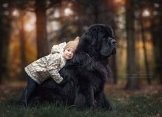 http://www.greatdane.photography/Prints/Little-Kids-and-their-Big-Dogs/i-dPt6Dsb/A