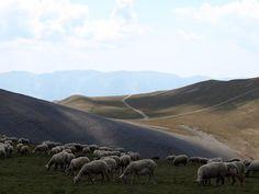 Andorra 01 Valle del Madriu-Perafita-Claror  El paisaje cultural del Valle del Madriu-Perafita-Claror es un microcosmos sumamente representativo de la manera en que el hombre ha aprovechado los recursos de las zonas altas de la cordillera de los Pirineos a lo largo de milenios