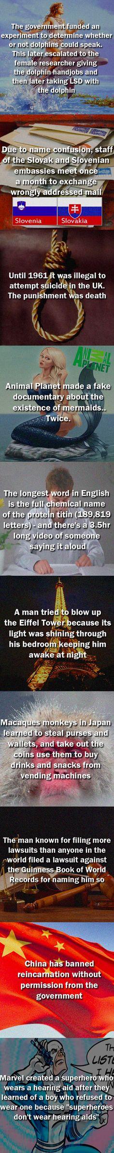 Ten random and interesting facts.
