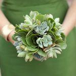 bukiet ślubny: eszeweria, kapusta