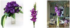gladiole mov - - flori in culoarea anului 2018: ultraviolet Glass Vase, Plants, Home Decor, Decoration Home, Room Decor, Plant, Home Interior Design, Planets, Home Decoration