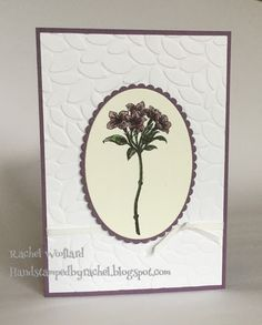 Stampin Up Cake Crazy birthday card from Occasions 2017. Card by Rachel Woollard, Stampin Up Avant Garden Saleabration 2017 card by Rachel Woollard, Stampin Up Demonstrator Melbourne. Classes Melbourne East.