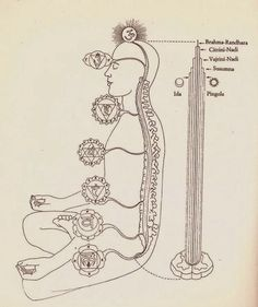 Each one of the seven chakras is a center of a specific kind of energy in the body. Reiki can be used to align the chakras or cleanse them. Chakra Art, Chakra Healing, Chakra Meditation, Kundalini Yoga, Pranayama, Tatouage Kundalini, Reiki Training, Chakras, Mudras