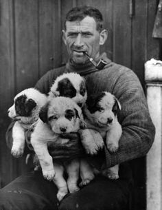 Tom Crean, explorer and hard man, holding some puppies and smoking a pipe.