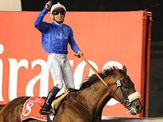Led by last year's winner Monterosso, 272 horses from 15 countries have been nominated to the Dubai World Cup (UAE-I), the world's richest Thoroughbred race with a purse of $10 million.