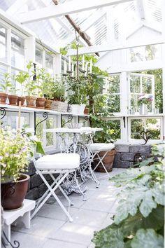 Greenhouse | meillä kotona puutarha