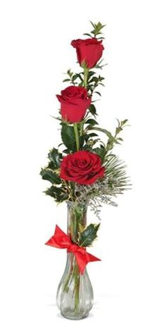 27 Best Single Rose Delivery Images One Rose Rose Delivery