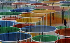 Daniel Buren's Rainbow Colored Forest - My Modern Metropolis