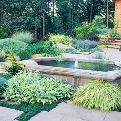 Charming Cascade: An unexpected water feature dresses up a drought-smart yard. -- A fountain may not seem like a first choice in a drought-tolerant garden, but good design can enable the feature to capture and recycle water. Drought Resistant Landscaping, Drought Tolerant Landscape, Landscape Design, Garden Design, Backyard Landscaping, Landscaping Ideas, Backyard Ideas, Dessert Landscaping, Water Garden