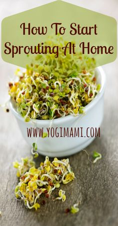 Growing sprouts at home is so easy and a great way to incorporate raw living foods into the diet.