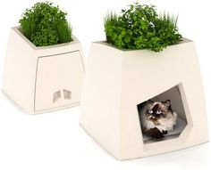 This trendy pet home also doubles as a planter for your favorite perennials.