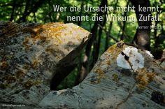 Mein Papa sagt... Wer die Ursache nicht kennt,nennt die Wirkung Zufall. Werner Mitsch  #Zitate #deutsch #quotes      Weisheiten & Zitate TÄGLICH NEU auf www.MeinPapasagt.de