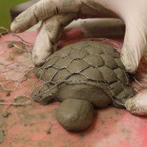 By Miled Ben Dhiaf …, Dough Concrete Butterfly Instructions! By Miled Ben Dhiaf …, Concrete Crafts, Concrete Projects, Clay Projects, Clay Crafts, Pottery Animals, Ceramic Animals, Clay Animals, Cement Art, Concrete Art