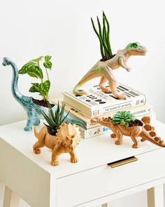 Turns Out, Cheap Dinosaur Toys Can Make Shockingly Stylish Decor There are so many fun ways to upcycle those old plastic dinosaurs you and your cousins used to play with. Make A Dinosaur, Dinosaur Toys, Dinosaur Gifts, Upcycled Crafts, Diy And Crafts, Plastic Dinosaurs, Plastic Animals, Dinosaur Bedroom, Planting For Kids