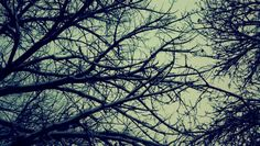 """""""Next Storm"""" www.afphotos.com"""