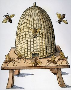'Beehive' by Granger Art