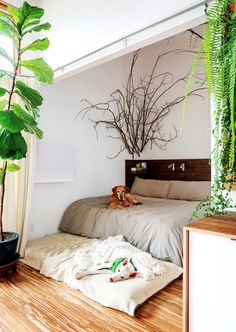 Somehow, I think we'd be the ones sleeping on the floor... via La Maison Boheme: Small Scale Living in Portland, OR