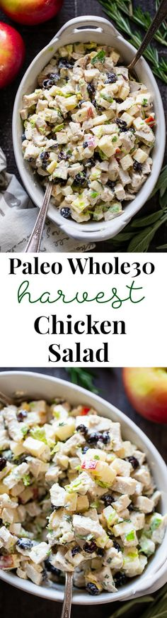 Harvest Chicken Salad with Herbed Aioli - Amazing Paleo Recipes - Paleo Whole 30, Whole 30 Recipes, Paleo Recipes, Cooking Recipes, Whole 30 Lunch, Recipe 30, Aioli, Paleo Dinner, Chicken Salad