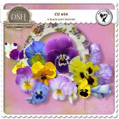 CU#54 by Black Lady Designs : DSH: Digital Scrapbooking Hill - high quality CU and PU elements, exclusive products, kits, freebies and more...