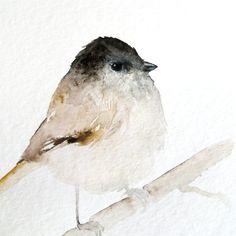 bird | Crush Cul de Sac