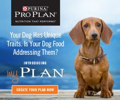 Find out if your dog food is giving your pet the best nutrition with Purina myPlan! Tell us about your dog's unique traits and preferences and get an expert recommendation for the right dry formula of Purina Pro Plan to meet your dog's nutritional needs. Plus, you'll get a $5.00 off Printable Coupon when you …