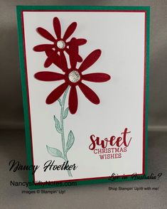 Daisy Lane by Stampin' Up! Cup of Christmas by Stampin' Up! Christmas Wishes, Christmas Colors, Cherry Cobbler, Flower Center, Glue Dots, Christmas Settings, Ink Pads, Nifty, Card Stock