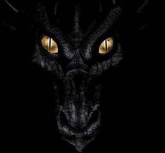 Dragon - makes me think of Maleficent :) Magical Creatures, Fantasy Creatures, Fantasy World, Fantasy Art, Dragon Medieval, Dragon's Lair, Dragon Eye, Shadow Dragon, Ice Dragon