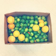 When life gives you lemons, limes and oranges......