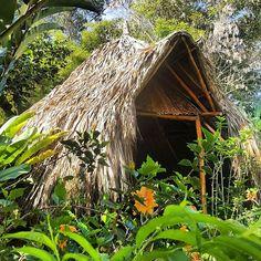 Bio arquitectura coqueta. Soto voce 🌼 @sindamanoyhttps://www.instagram.com/p/BUKwB6EhOSR/