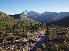 Corsica - Fleuves et Rivieres Corse - Bonifatu-Figarella - La Figarella est un petit fleuve de la Haute-Corse et se jette dans la Mer xn--mditerrane-b7... longueur de son cours d'eau est de 24 km. Dans sa partie haute, la Figarella s'appelle ruisseau de Lomitu ensuite ruisseau de Spasimata. Il naît sur les pentes nord de la Muvrella (2 148 m), à l'altitude de 1 930 mètres, juste au-dessus du petit lac de la Muvrella (1 867 m), sur la commune de Calenzana.