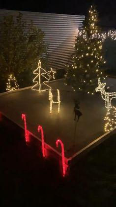 Mit diesen Details gelingt deine Weihnachtsdeko mit Sicherheit. Outdoordekoration für die Adventzeit . Advent, Outdoor Christmas Decorations, Holiday Decor, Outdoor Photography, Penguins, Love Fashion, Christmas Tree, Neon Signs, Blog